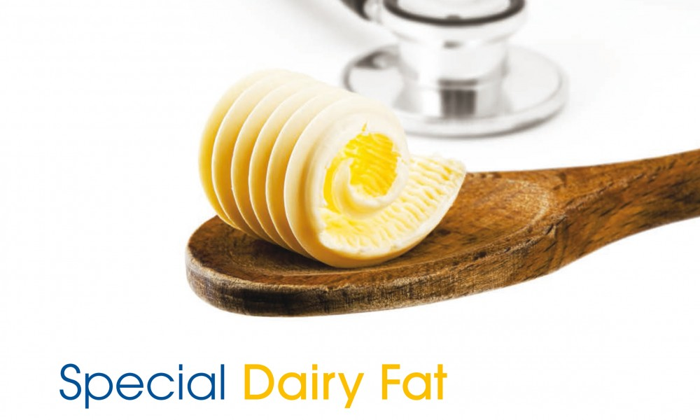 The saturated-fat hunt is over